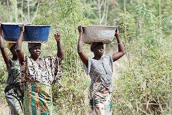 mujeres y el agua