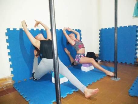 poledance (2)